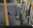 Alexandria, unarmed man killed by policejj