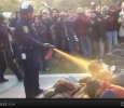 Occupy Wall St, the pepper-spray copjj