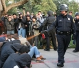Occupy Wall St: the pepper-spray cop
