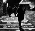 Rain  - #ijf14 #thewholepic14
